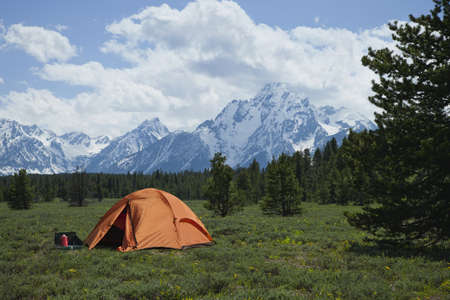 An orange tent sits in a meadow surrounded by pine trees beneath the Grand Teton mountain range