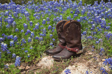 A brown leather pair of cowboy boots with spurs sits on rock in a field of Texas bluebonnets Фото со стока