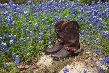 Ein brauner lederner Paar Cowboystiefel mit Sporen sitzt auf Felsen in einem Feld von Texasbluebonnets Standard-Bild - 39218549