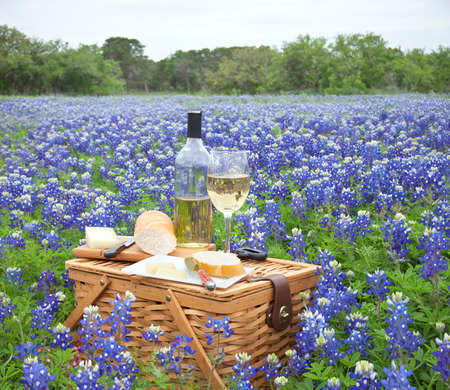 A brown wicker picnic basket with wine cheese bread and utensils in a field of Texas Hill Country bluebonnets