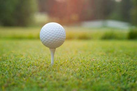 pelota de golf: Primer plano de una pelota de golf en una camiseta blanca al atardecer con el fondo desenfocado