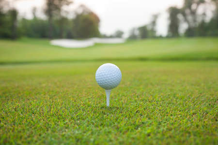 golf tee: Low angle view of a white golf ball on a tee with defocused background