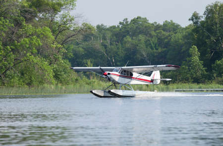 piper: A small white floatplane lands on a Minnesota lake in summer Stock Photo