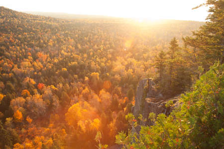 minnesota woods: Backlit cliff and pines with lens flare above aspen trees in fall color on Oberg Mountain in northern Minnesota