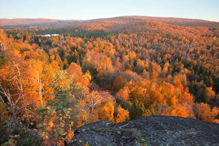 minnesota woods: High angle view of trees in fall color with hills and lake from Oberg Mountain in northern Minnesota