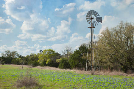 Windmill and bluebonnets under beautiful cloudy sky in the Texas Hill Country