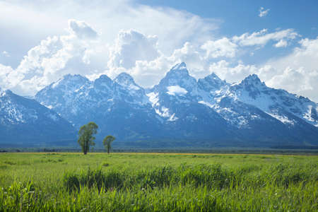 Grand Teton mountain range above grassy fields in Wyoming, USA Stock Photo