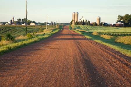 朝の光の農場と農村のミネソタ未舗装の道路