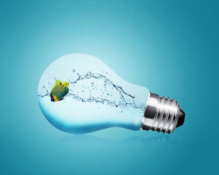 Anglefish jumping into light bulb, Good Concept for new Idea. Stock Photo - 10892016