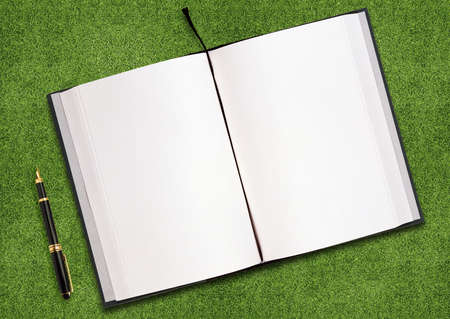 blank opened book outdoors on the green grassland and pen Stock Photo - 10892015