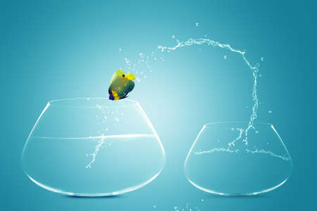 free image: Anglefish jumping to Big bowl, Good Concept for new life, Big Opprtunity, Ambition and challenge concept. Stock Photo