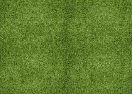 outdoor green grassland texture. Zdjęcie Seryjne