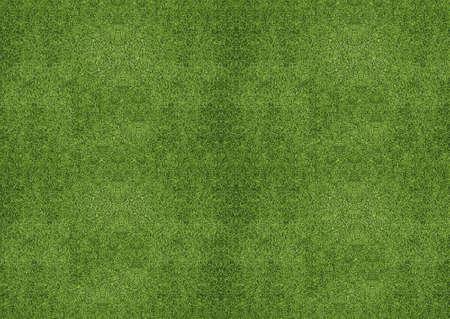 outdoor green grassland texture. photo