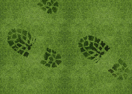 Shoe print on green grassland. photo