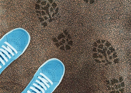 boot print: Blue sport shoe on street and shoes print around. Stock Photo