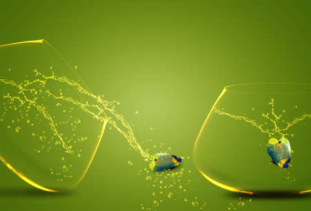 Two angelfish jumping out of  fishbowl to new one, one failed one win. Stock Photo - 11674738