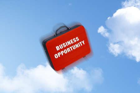 business case: Business case vallende schreef op bedrijven opprtunity