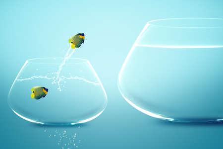 Anglefish in small fishbowl watching goldfish jump into large fishbowl photo