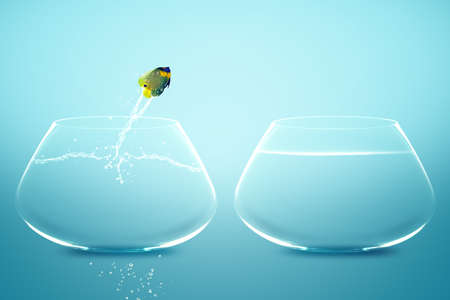 Anglefish jumping to Big bowl, Good Concept for new life, Big Opprtunity, Ambition and challenge concept. photo