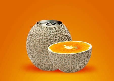 melon can and half orange, ideal for orange juice.  photo