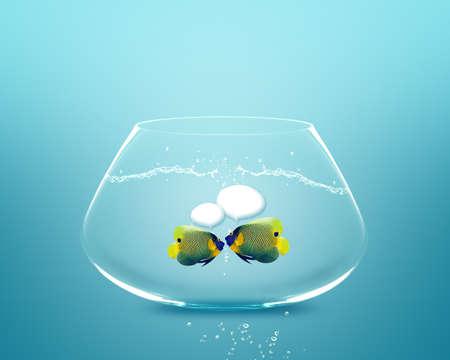 Fish social site