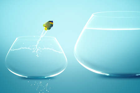 taking a risk: Anglefish jumping into bigger fishbowl. Stock Photo