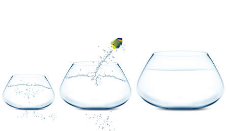 Anglefish jumping to Big bowl, Good Concept for new life, Big Opprtunity, Ambition and challenge concept. Stock Photo - 11798645
