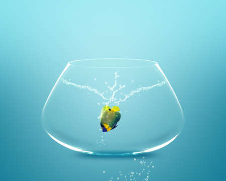 Anglefish jumping to Big bowl, Good Concept for new life, Big Opprtunity, Ambition and challenge concept. Stock Photo