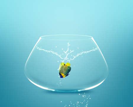 Anglefish springen naar Big kom, goed concept voor nieuw leven, Big Opprtunity, ambitie en uitdaging concept. Stockfoto
