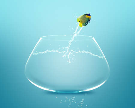 angelfish jumping and doing Acrobatic show Stock Photo - 11798669