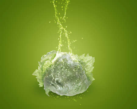 Fresh lettuce with water splashes on green background. photo