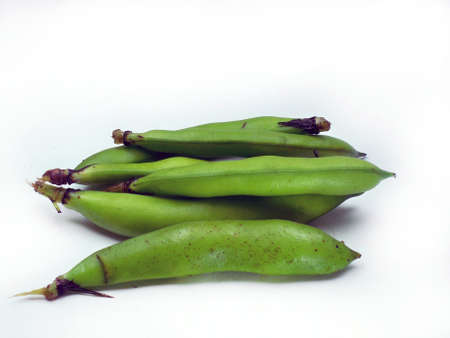 haba: bunch of broad beans on a white background
