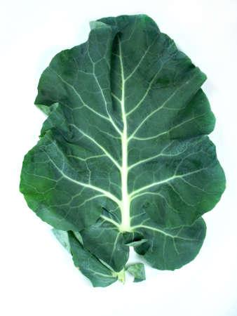 broccolli: Leaf of  a broccoli on a white background