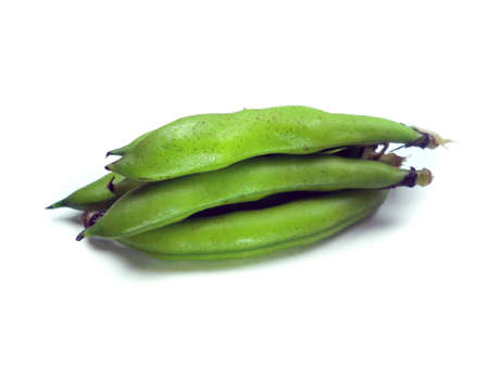 bunch of broad beans on a white background  Stock Photo - 12463396