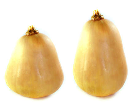 butternut squash isolated on white background  photo