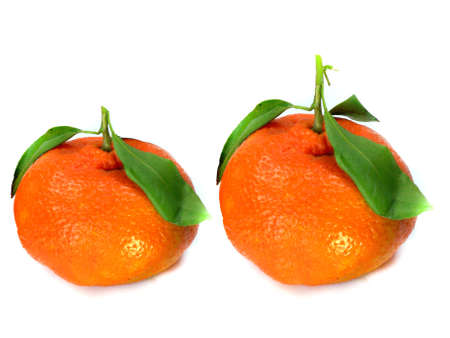 Fresh tangerine with leaves isolated on a white background photo