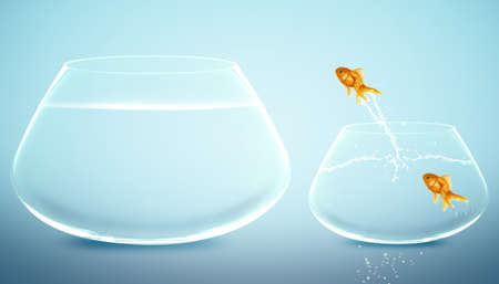 goldfish  jumping to Big bowl, Good Concept for new life, Big Opprtunity, Ambition and challenge concept. Stock Photo
