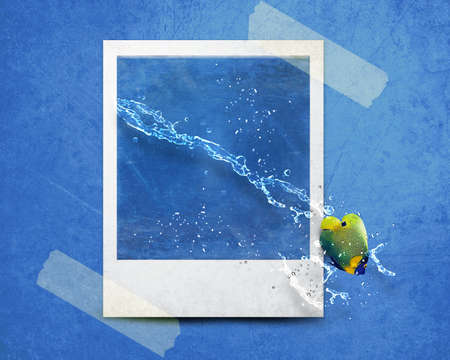 fish jumping out of photo with water splashes. photo