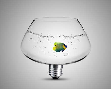 pensamiento creativo: bombilla hecha de plato de pescado, foco de la imagen conceptual de la luz. Foto de archivo