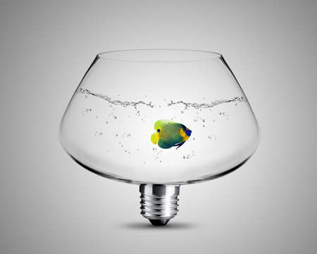 light bulb made from fish bowl, light bulb conceptual Image.
