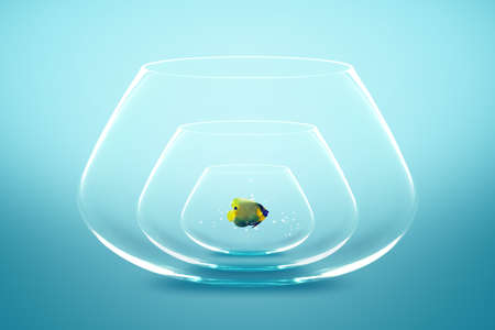 Angelfish live in small bowl, Good Concept for A growing population. Stock Photo - 13171511