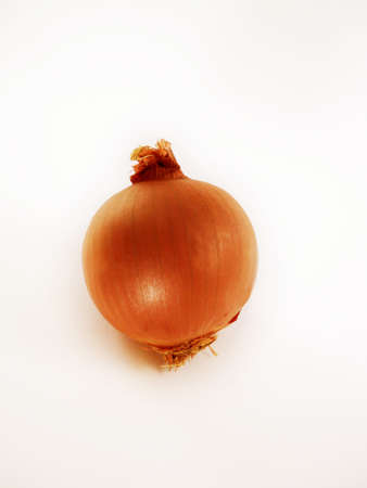 onion vegetable on a white background  photo