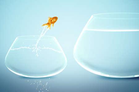 goldfish jump: goldfish in small fishbowl watching goldfish jump into large fishbowl