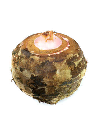 tuber: Taro Root Vegetable Isolated on White background.