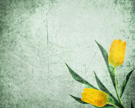 Abstract yellow tulips grungy Background Texture
