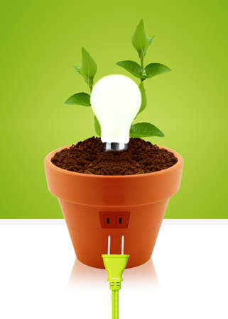 modern energy saving concept, bright bulb in garden pot with small plant. photo