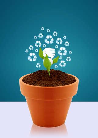Energy saving fluorescent light bulb as flower in garden pot, Ecological awareness concept photo