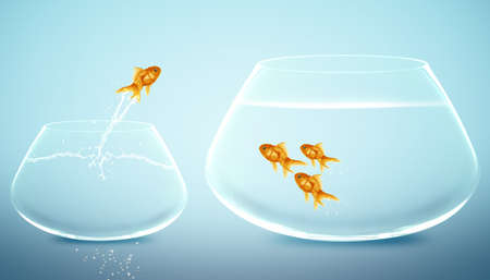 goldfish jumping into bigger fishbowl. photo