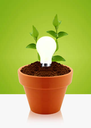 regenerative: modern energy-saving concept,  bright bulb in garden pot with small plant.