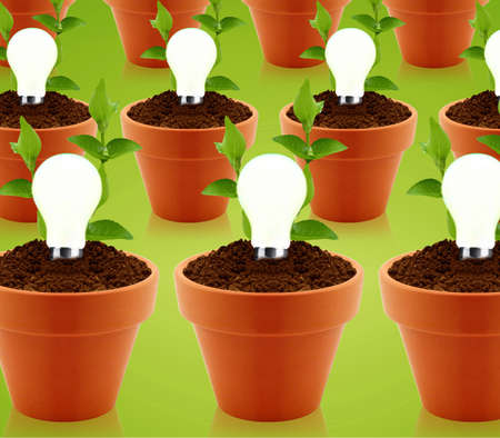 modern energy-saving concept,  bright bulb in garden pot with small plant. Stock Photo - 13274974